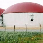 Biogas Energieträger der Zukunft?