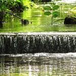 Vortrag – Geht uns das Wasser aus?