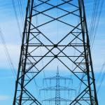 Im Markendschungel der Stromanbieter