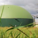 Biogasanlagen auf Ökobetrieben