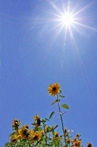 Sonnenernergie