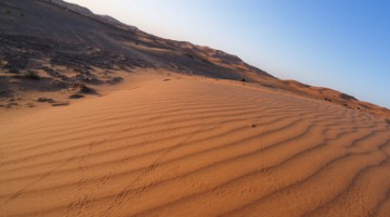 Die Wüstenstrom-Offensive