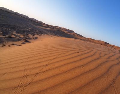 Wüstenstrom