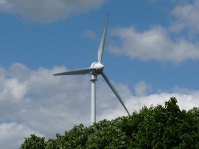 Windenergie Wald