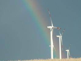 Ausschreibungsmodell: Windbranche zieht erste Zwischenbilanz