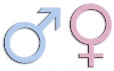 mann frau gender geschlechter