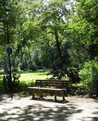 Park Parkbank Natur Grün
