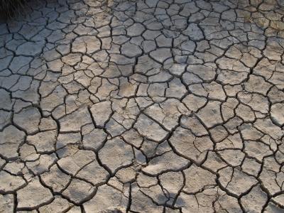 Dürre,Hitze,Klimawandel