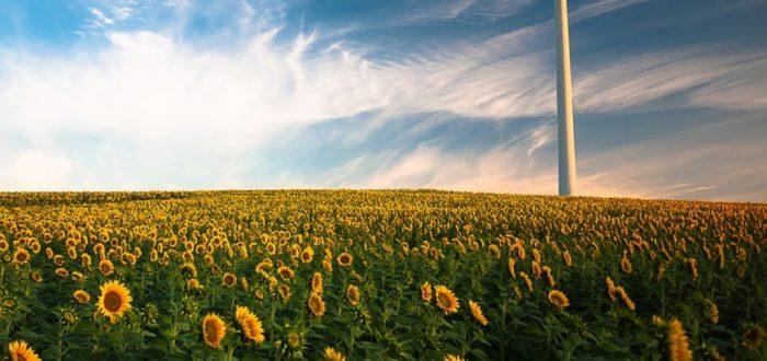 Erneuerbare Energien: Bilanz 2018