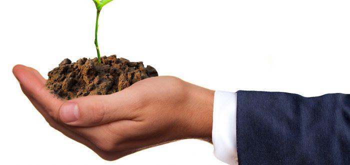 Neujahrsvorsätze 2021: Klimaschutz und Ökostrom