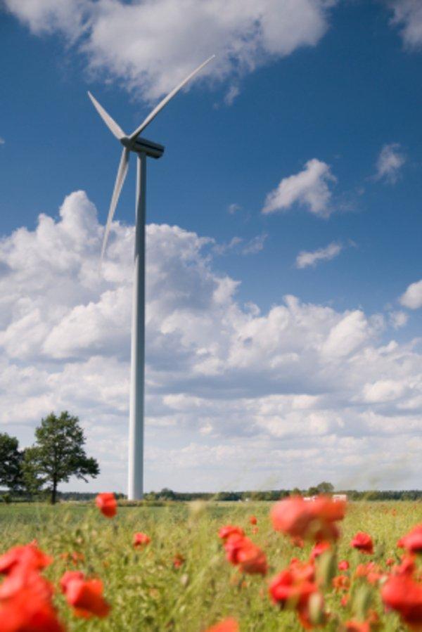 Ökostrom und Klimaschutz